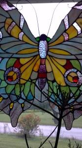 LLisa's butterfly