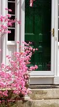 Pink bush Green door 1