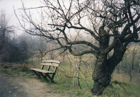 Waiting (the bench)070
