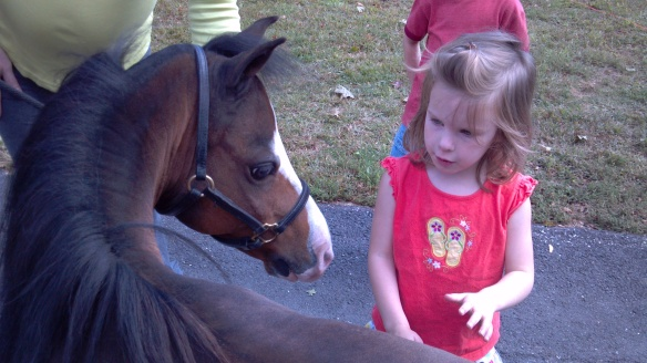 Sidney and pony 6