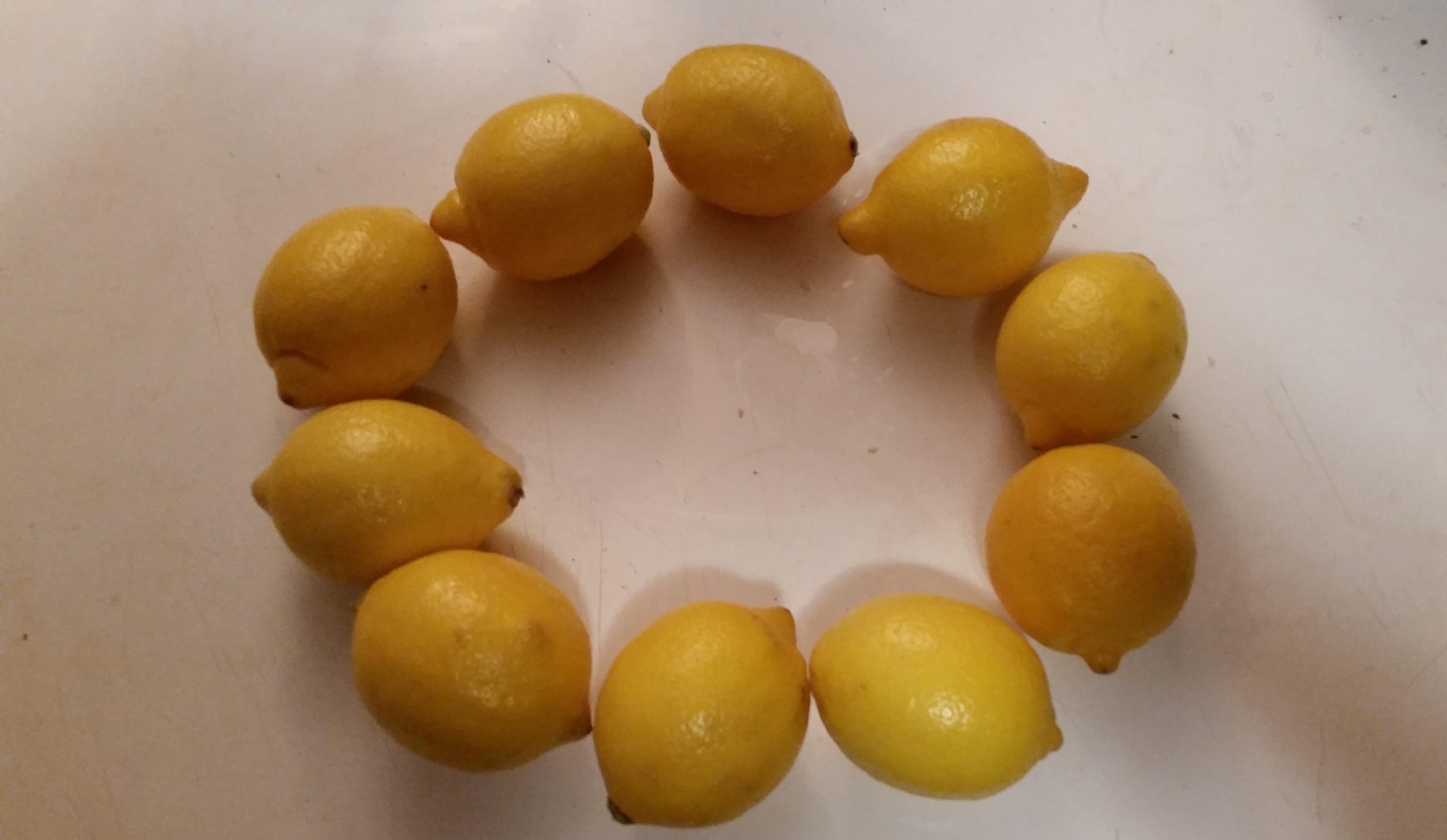 Lemon Circle