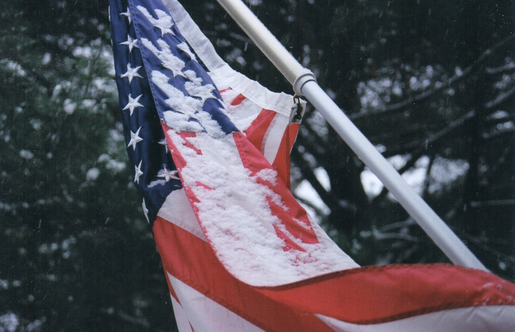 Flag in Snow Forest Lane032